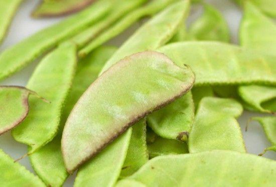 养生警惕:这7种常吃的蔬菜居然有毒